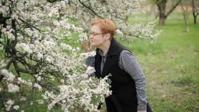 La donna senior felice esamina ed odora il fiore del ciliegio Movimento lento stock footage