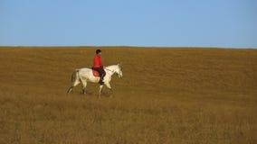 La donna si siede su una vista laterale che del cavallo un atleta guida su un cavallo Movimento lento video d archivio
