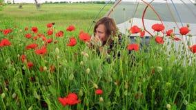 La donna si siede vicino alla tenda sul campo di fioritura del papavero, ammira e fiuta i fiori video d archivio