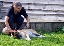 La donna spazzola il suo cane immagine stock