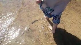 La donna sta camminando a piedi nudi sulla spiaggia nel mare, il feett della donna nell'acqua, camminante alla costa, l'estate al stock footage