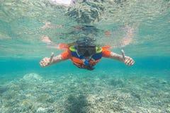 La donna sta immergendosi in mare tropicale per vede la barriera corallina al meno di Gili Fotografia Stock Libera da Diritti