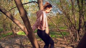 La donna sta scalando sull'albero video d archivio