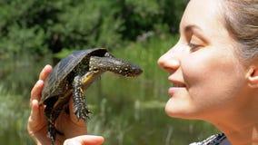 La donna sta tenendo una piccola tartaruga del fiume in sue mani vicino al fronte sulla natura e sul fondo del fiume archivi video