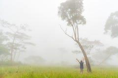 La donna stava spandendo la mano per si rilassa in foresta che è stata coperta da foschia sulla mattina Immagini Stock