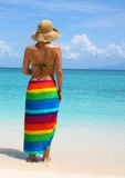 La donna sul litorale Immagine Stock