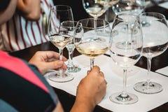 La donna tiene due vetri di vino bianco La gente considera il colore del vino e della prova come odora in vetri differenti Fotografie Stock Libere da Diritti