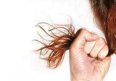 La donna tiene i capelli in un pugno Fotografia Stock Libera da Diritti