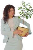 La donna in vestito mantiene il POT con la pianta Immagine Stock