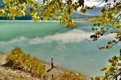 La donna visita il fiume nella valle di Pemberton ed in Duffy Lake Road vicino a Whistler, BC Canada mentre l'autunno arriva ed i Fotografia Stock