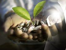 La doppia esposizione del punto dell'uomo di affari la pianta di soldi e del dito sta coltivando le monete a disposizione, coltiv immagine stock