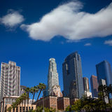 LA Downtown Los Angeles Pershing Square palm tress Royalty Free Stock Photo