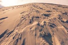 La duna di Pyla, il più alta duna di Europa Immagine Stock Libera da Diritti