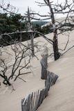 La duna famosa dei recinti di Pyla, il più alta duna di sabbia in Europa Fotografia Stock