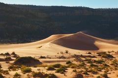 La duna sabbiosa di colore giallo arancione Immagini Stock Libere da Diritti