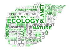 La ecología marca la nube con etiqueta Imagen de archivo libre de regalías