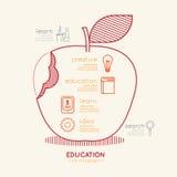 La educación linear plana Apple de Infographic resume concepto Vector Fotos de archivo libres de regalías