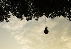 La ejecución de la lámpara debajo del árbol en puesta del sol imágenes de archivo libres de regalías