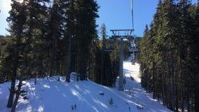 La elevación de silla de cuatro personas del esquí que pasa a través de los árboles sube una montaña con un cielo azul metrajes