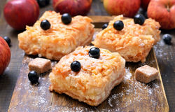 La empanada de manzana hecha en casa adornó chokeberry negro de la baya Foto de archivo
