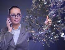 La empresaria con los dólares que habla en el teléfono móvil Fotos de archivo libres de regalías