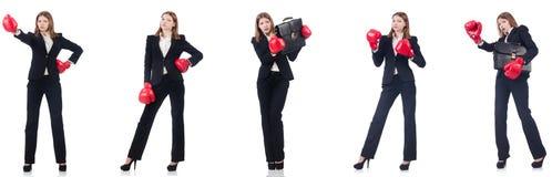 La empresaria con los guantes de boxeo aislados en blanco fotos de archivo libres de regalías