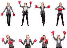 La empresaria de la mujer con los guantes de boxeo en blanco Imagenes de archivo