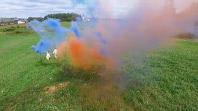 La encuesta aérea de pares camina en el campo con humo coloreado en manos El volar sobre hombre y la mujer corren a través del ca Fotos de archivo libres de regalías