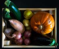 La endecha plana del cajón de madera llenó de las verduras del otoño con un bl foto de archivo libre de regalías