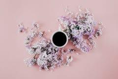 La endecha plana ramifica fondo Sprin del rosa del café de la taza de las flores de la lila Imagen de archivo libre de regalías