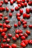 La endecha roja orgánica recientemente escogida del briar en la tabla se secó, vertica Fotos de archivo libres de regalías