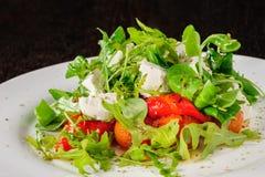 La ensalada caliente con los tomates, ruccola, espinaca, cocinó el paprika y el queso fotografía de archivo