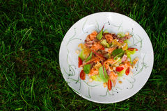 La ensalada con microgreen Foto de archivo libre de regalías