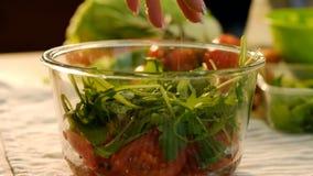 La ensalada del cocinero de la comida añade el cuenco del arugula de los tomates de la sal almacen de video