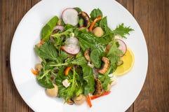 La ensalada fresca de la primavera con el rábano, Mizuno, setas asó a la parrilla, queso del Adygei, espinaca, paprika, limón, ma Fotografía de archivo