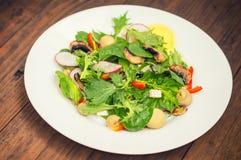 La ensalada fresca de la primavera con el rábano, Mizuno, setas asó a la parrilla, queso del Adygei, espinaca, paprika, limón, ma Foto de archivo libre de regalías