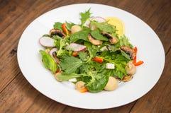 La ensalada fresca de la primavera con el rábano, Mizuno, setas asó a la parrilla, queso del Adygei, espinaca, paprika, limón, ma Imágenes de archivo libres de regalías