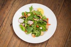La ensalada fresca de la primavera con el rábano, Mizuno, setas asó a la parrilla, queso del Adygei, espinaca, paprika, limón, ma Imagen de archivo