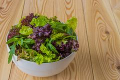 La ensalada se va, lechuga púrpura, espinaca, arugula Sala fresco mezclado Imagenes de archivo