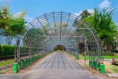 La entrada del arco del metal con Asphalt Walk Way para adorna la planta o la flor Fotos de archivo