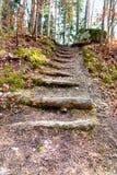 La escalera con abre una sesión el bosque sueco Imagen de archivo