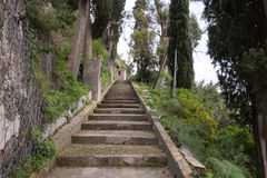 La escalera en el bosque Imagen de archivo