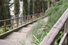La escalera en el bosque Fotografía de archivo
