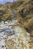 La escalera en las maderas acerca al torrente Felcina, Italia Imagen de archivo