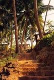 La escalera lleva a la casa en las palmeras Foto de archivo