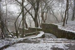 La escalera vieja en el parque Imagenes de archivo