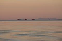 La escena crepuscular del océano de la puesta del sol con el remolcador y tres barges adentro el fondo Foto de archivo