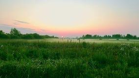 La escena rural es un campo y un heno cosechados para el invierno en campo verde Hierba verde de Cutted Puesta del sol en horizon Fotos de archivo