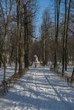 La escultura TANKRED y KLORYNDA en callejón parquea Lazienki real en Varsovia, Polonia fotos de archivo libres de regalías