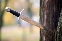 La espada antigua del primer empujará en un árbol Fotografía de archivo